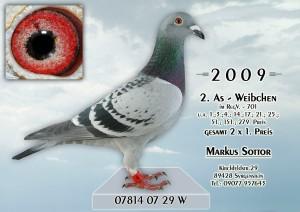 26.07.2009-07814-07-29W