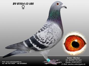 73DV-07814-13-108 0ed1