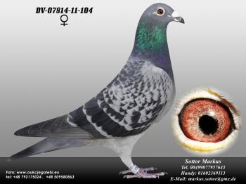 74DV-07814-11-104 0ed1
