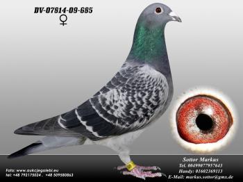 76DV-07814-09-685 0ed1